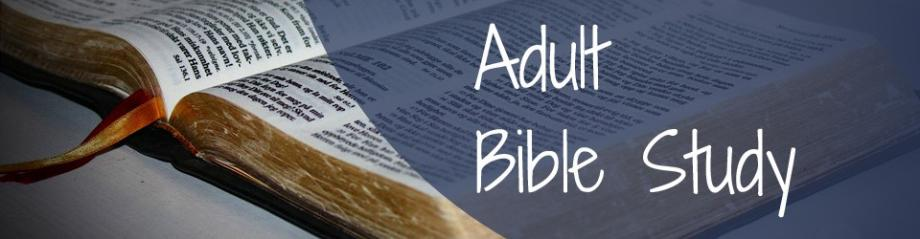 WEDNESDAY NIGHT ADULT BIBLE STUDY Intro Photo